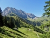 Fitzer 2458m, P. 2542m, P.2559m,  Rotstock 2637m, Bütschiflue 2620m, Aeugi 2435m, Bummerengrat ; unten Alp Farni