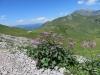 Blick auf den Hahnenmoospass  1949m; Laveygrat 2248m, hi Tierberg 2371m, Seewlihorn 2467m, Sattligrat 2539m, P. 2728m, Albristhorn 2763m