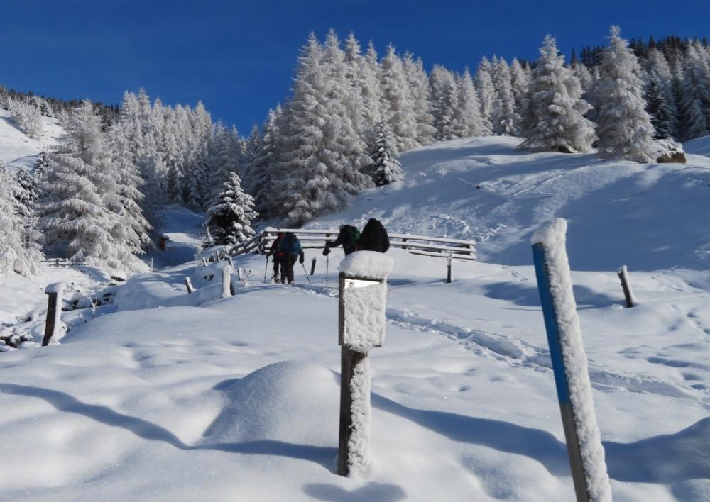 im tief verschneiten Sur 1610m; Einstieg in den Schneeschuhtrail
