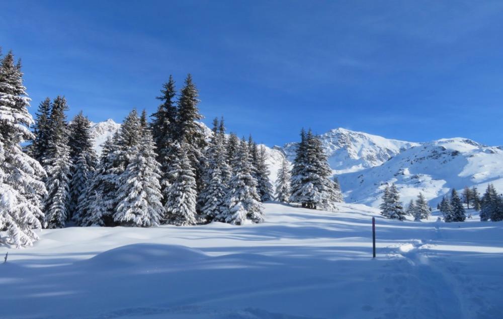 tief verschneite Alp Flix