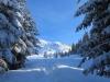 der Weg zur Alp Flix