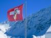 Schweizerfahne mit Steinbock