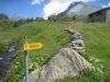 Blatte 19893m; Wasenhorn 3246m, Mäderhorn 2852, Hübschhorn 3192m
