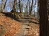 ein schöner Weg durch den Wald hinauf
