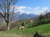 bei Abstieg nach Vilters; Falknishorn 2451m, Falknis 2562m, Glegghorn 2450m, Vilan 2376m