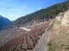 gegen le Sommets des Vignes 769m