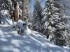 auf dem Schneeschuhtrail durch den Winterwald