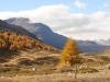 über den Berninapass; Piz Chalchagn 3154m, Piz Corviglia 3060m, Piz FGlüna 3106m, Piz Saluver 3146m