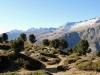 Blick gegen die Belalp:Gersthorn 2926m,   Schilthorn 3122m, Alpjuhorn 3134m, Grisighorn 3134m, Gänderhorn 3176m, Hohstock 3226m
