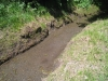hier führt die Bisse de Sion Wasser