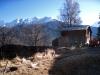 Haus bei Flesche 1110m; Bättlihorn 2951m, Gross Huwetz 2923m, Füllhorn 2738m,