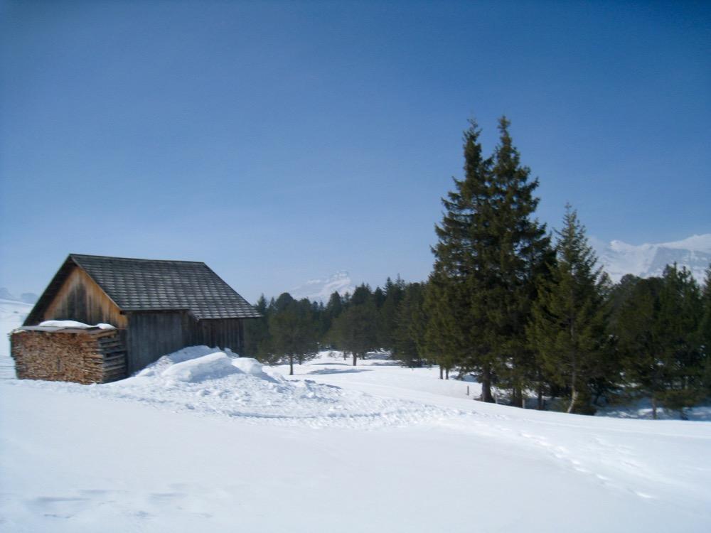 Hütte beim Türndliwald