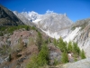 auf dem Weg zur Burghütte;  vor dem kl. Wannenhorn ; Triftgletscher und Fieschergletscher