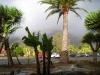 Regenbogen vor dem Hotel las Tirajana