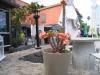 Detail im Garten des Restaurants