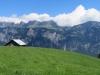 auf dem Schwarzenberg: Palfries; Fulfirste bis Tschugga