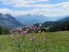 Sicht auf den Chapfensee ; Gonzen, Falknis, Glegghorn und Vilan