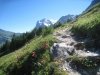 Wetterhorn 3701m, Mittelhorn 3656m, Rosenhorn 3689m, Mättenberg