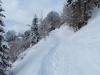 auf einem nicht gespurten Weg zur Waldegg