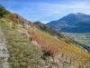 Sicht zum Ergischhorn und Signalhorn