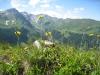 Hochwang 2533m, Tüfelschopf 2455m, Fulberg 2390m