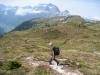 Glärnisch;  Birgitte im Abstieg nach  Alp Ober Fessis