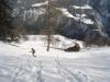 Bruni im tiefen Schnee