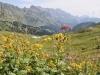 schingel 2540m,Schafberg 2727m, Salaeuelchopf 2841m, Scheseplana 2964m, Zimba 2643m,Kirchlispitzen 2522m, Drusenfluh 2827m, Dri Türm 2830m, Sulzfluh 2818m; unten Alp Bad 1953m