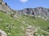 Blick auf den Weg zum Fläschertal; Naafkopf