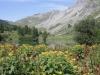 Vorderst See Vorderst See  1888m; Falknis 2562m, Vorder Grauspitz 2599m