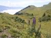 Abstieg zur Älplibahn:  mi der Weg, den ich am Morgen gegangen bin;  Blauer Eisenhut
