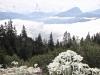 zurück bei der Älplibahn; Panorama mit Haldensteiner Calanda und Edelweissim Topf