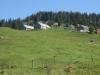 Alp Looch 1535m