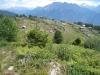 Blick auf Alp Nessel 2010m