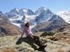 Bruni auf der Fourcla Surlej 2755m; Piz Bernina 4048m, Piz Scercen 3971m, Piz Roseg 3937m, Fuorcla la Sella  mit Sella Gletscher,  Piz Sella 3506m