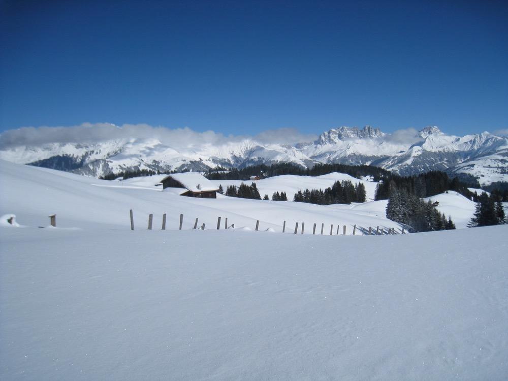 Furnerberg; Drusenfluh 2827m, Dri Türm2830m,vo  Schafberg 2456m, Sulzfluh 2817m, Chüenihorn 2413m