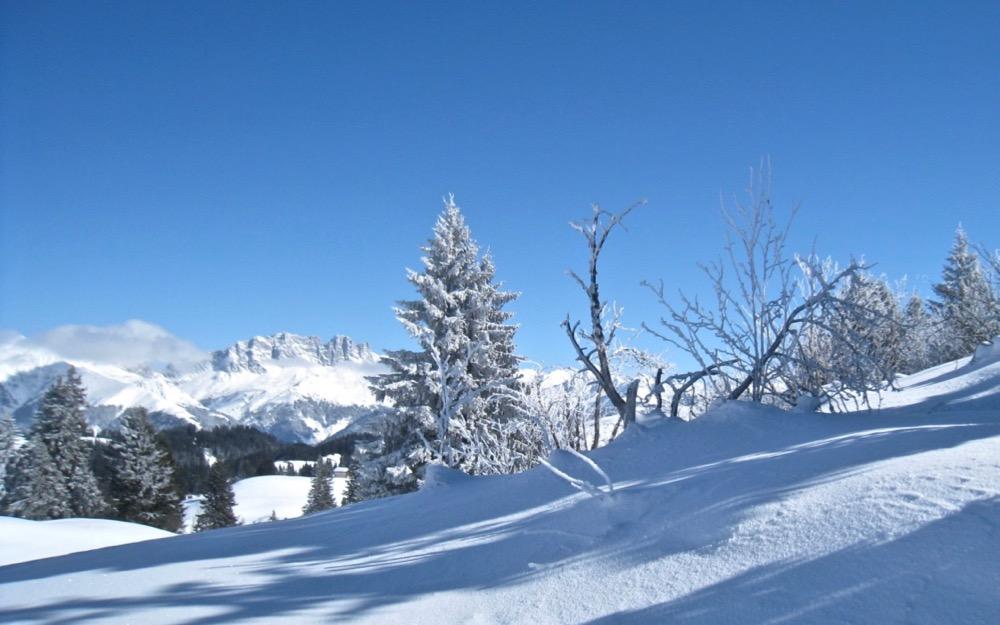 Winterlandschaft mit Drusenfluh