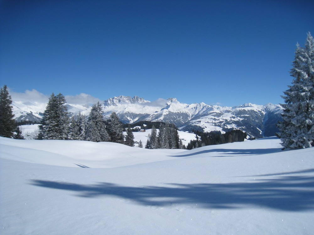 Drusenfluh 2827m, Dri Türm2830m,vo  Schafberg 2456m, Sulzfluh 2817m, Chüenihorn 2413m, Alpbüel  2022m,