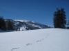 Winterbild mit Gamserrugg