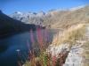 Lago di Lucendro 2134m, Pizzo Lucendro 2963m, Stegenhorn 2709m, Siwerbenhorn 2764mLago di Lucendro 2134m