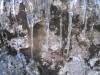 Eiszapfen im Schatten