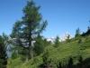 auf dem Panoramaweg zum Gibidum; Bietschhorn