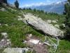 alpines Idyll