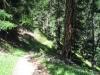 ein schöner Wanderweg nach Gspon