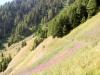 der Talkessel von Löüwene mit den Weidenröschen