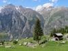 Wasuhorn 3334m, Festihorn 3092m, Sparruhorn 2988m, Furggwanghorn;  Jungen