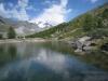 der Grünsee 2300m; Rimpfischhorn 4199m, Strahlhorn 4190, Adlerhorn 3988m und Findelgletscher
