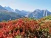 Herbststimmung; Hoillehorn,  Bättlihorn 2951m, Breithorn 2529m