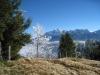 Sicht vom Hinterfallenchopf: Girenspitz 2448m, Säntis 2501m, Grauchopf 2218m, Grenzchopf 2193m, Silberplatten 2158m, Stoossattel 2044m, Stoss 2111m,  Lauchwis 1830m