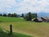 grüne Emmentaler Landschaft; Blick gegen die Alpen